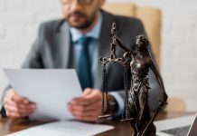 prawnik